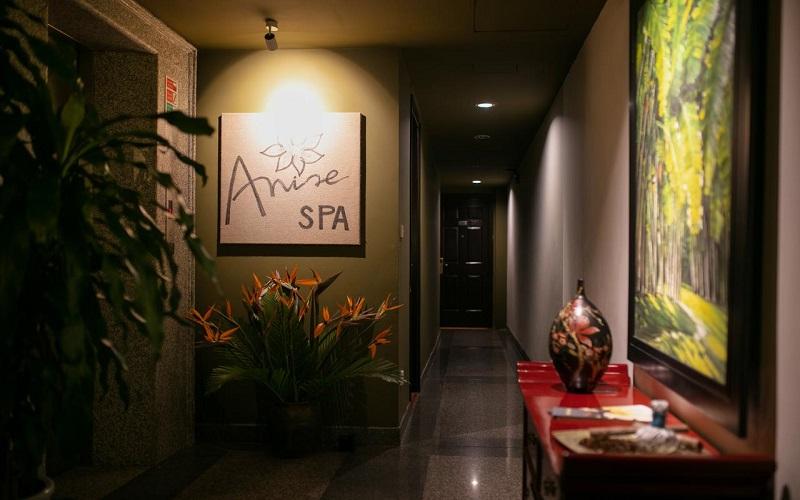 هتل آنیس هانوی
